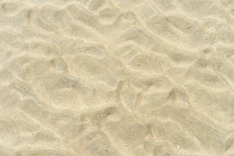 Dettagli della sabbia sulla spiaggia Goa India di Palolem fotografie stock