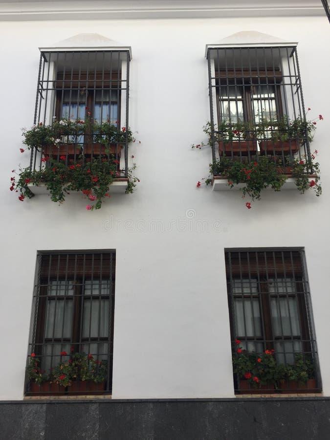 Dettagli delle inferriate della finestra su una casa a Cordova fotografia stock