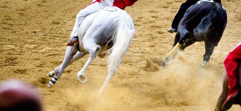 Dettagli di corsa di cavalli di Asti dei Di di Palio delle gambe galoppanti dei cavalli sull'ippodromo immagine stock libera da diritti