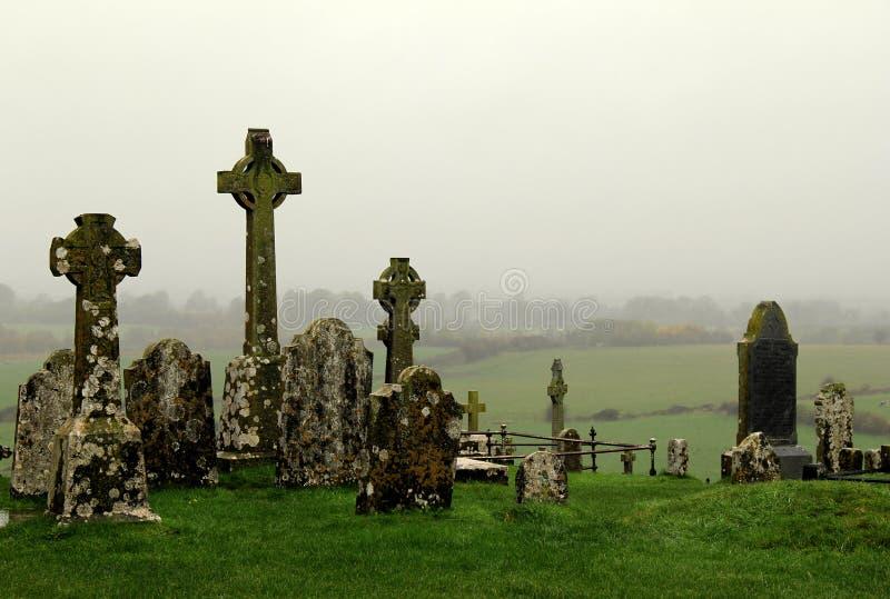 Dettagli di vecchi croci celtiche e campi di rotolamento, roccia di Cashel, contea Tipperary, Irlanda, 2014 fotografia stock