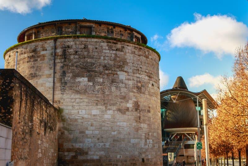 Dettaglio architettonico dell'alta corte del Bordeaux fotografie stock