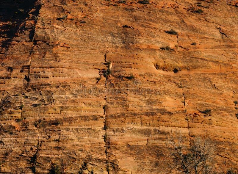 Download Dettaglio Degli Strati Sedimentari Dell'arenaria Immagine Stock - Immagine di roccia, naturalizzato: 55350543