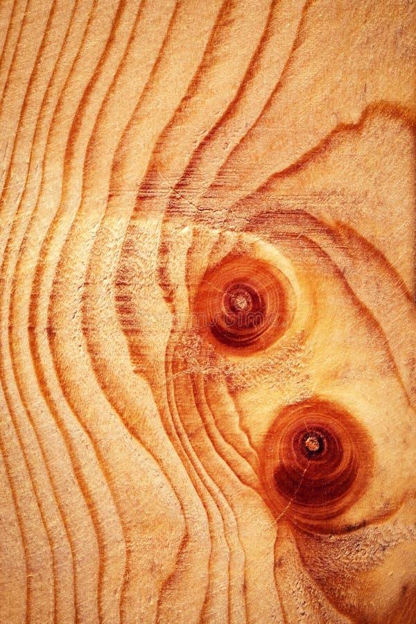 Dettaglio del bordo di legno su un nodo fotografia stock