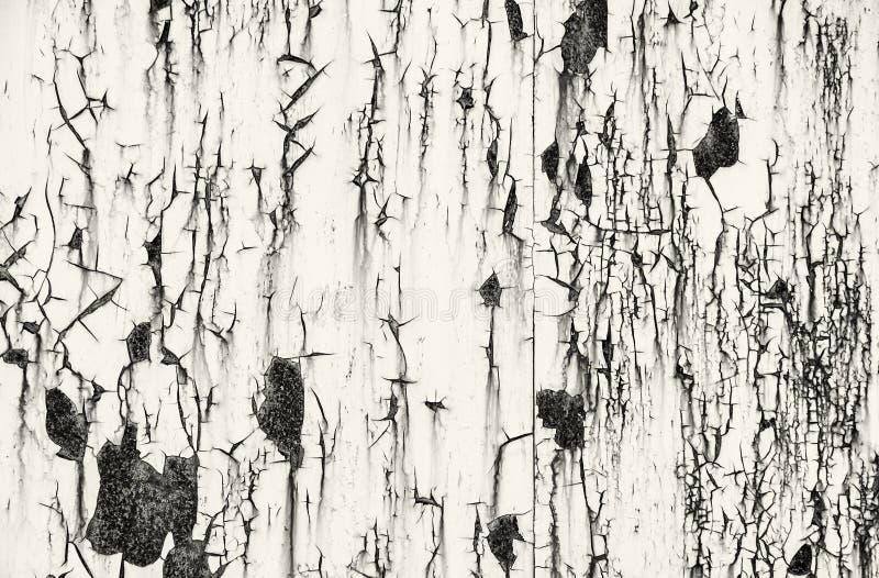 Dettaglio del fondo arrugginito del metallo, incolore fotografie stock