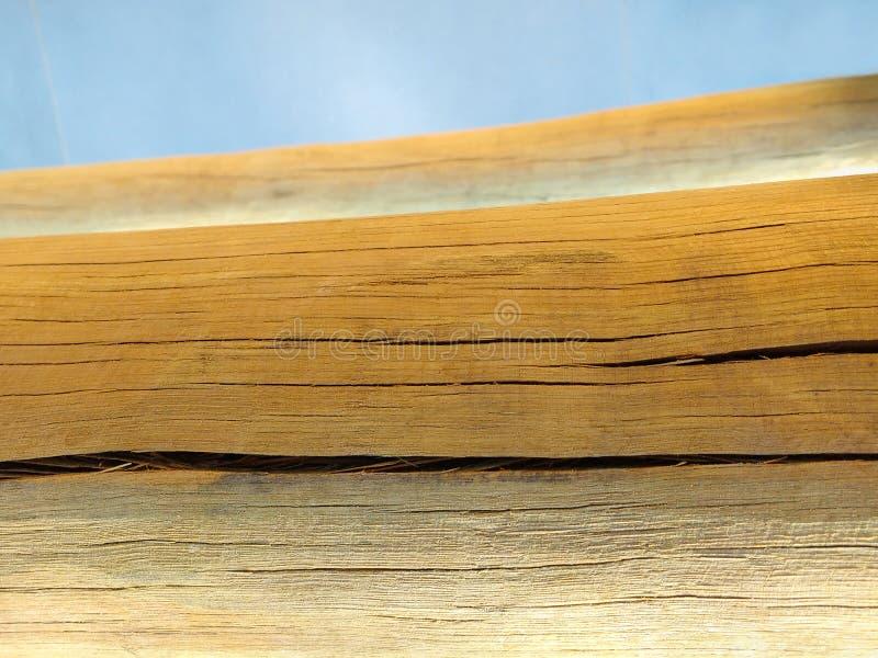 Dettaglio del primo piano del ceppo di legno asciutto del taglio fotografia stock libera da diritti