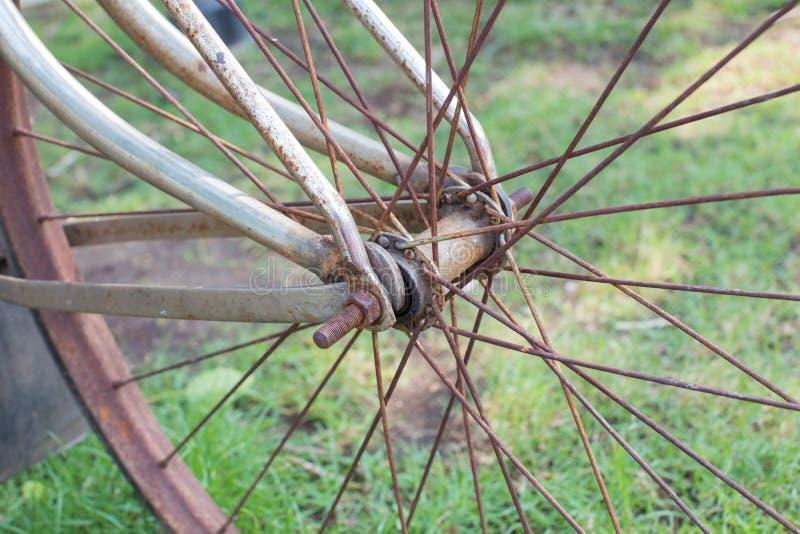 Dettaglio del primo piano dei raggi della ruota di bicicletta fotografie stock libere da diritti