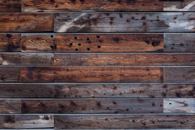 Dettaglio della parete di legno del pannello con i modelli in grano immagini stock libere da diritti