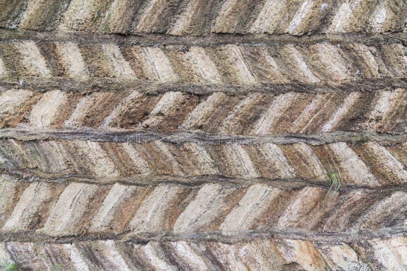 Dettaglio delle case islandesi tradizionali del tappeto erboso nel museo piega di eredità di Glaumbaer, Islanda fotografia stock