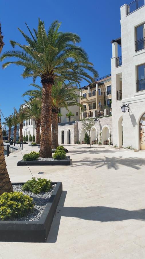 Dettaglio di Oporto Montenegro immagine stock
