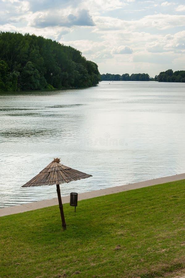 Dettaglio di Tisa River fotografia stock libera da diritti