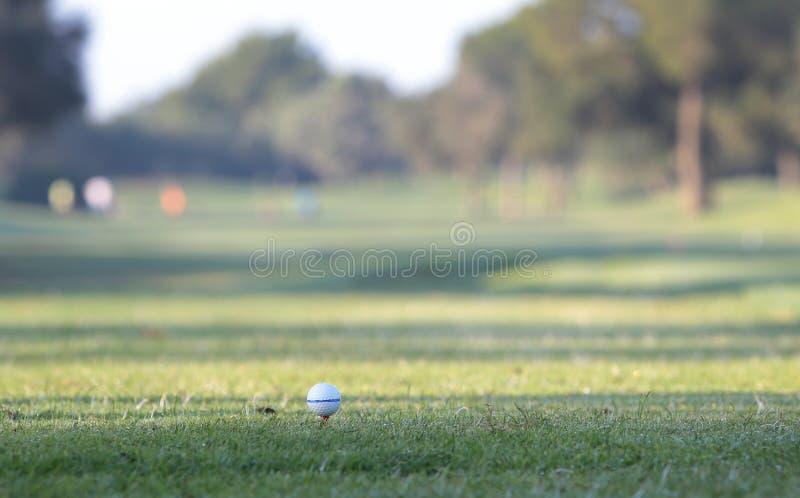 Dettaglio di torneo di golf sulla palla fotografia stock libera da diritti