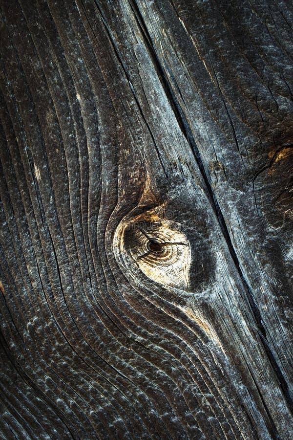 Dettaglio di un bordo di legno scuro anziano immagini stock