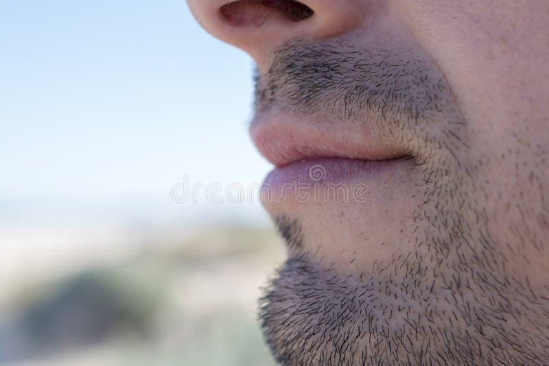 Dettaglio di una barba del ` s dell'uomo fotografie stock libere da diritti