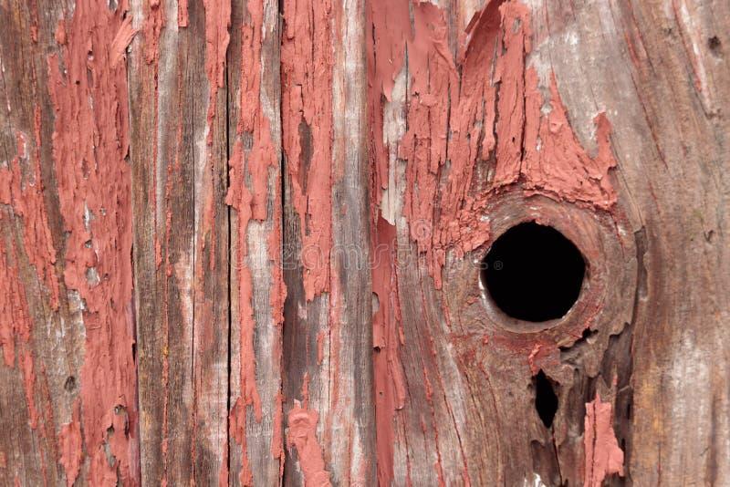 Dettaglio di vecchio, sbucciante pittura rossa su piccolo, legno fuori che costruisce fotografie stock libere da diritti