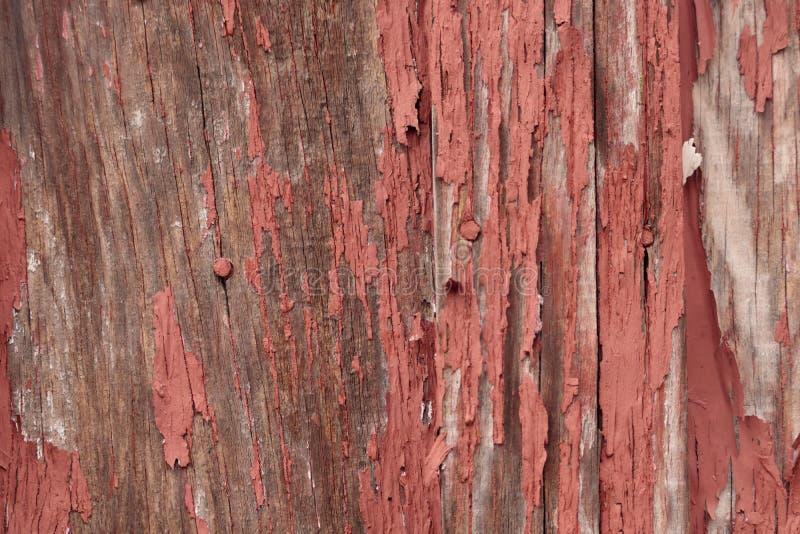 Dettaglio di vecchio, sbucciante pittura rossa su piccolo, legno fuori che sviluppa fondo immagine stock libera da diritti