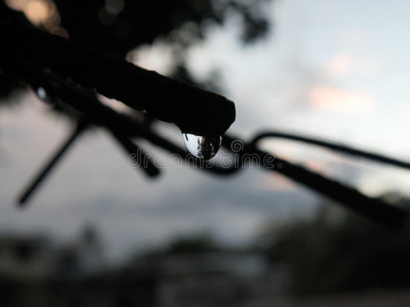 dettaglio di vista della goccia di pioggia urbano con la lampadina fotografia stock libera da diritti