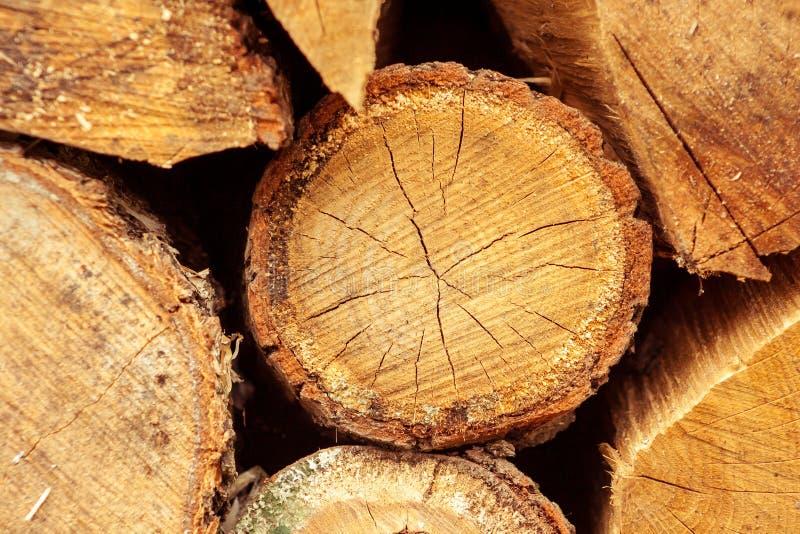 Dettaglio impilato dei tronchi di albero Industria del legname della Finlandia fotografia stock libera da diritti