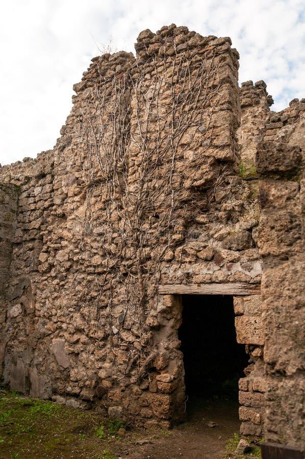 Deuropening in wijnstok-behandelde muur n Pompei, Italië royalty-vrije stock afbeeldingen