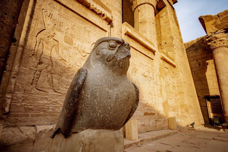 Deus Horus no templo de Edfu em Egito imagem de stock royalty free