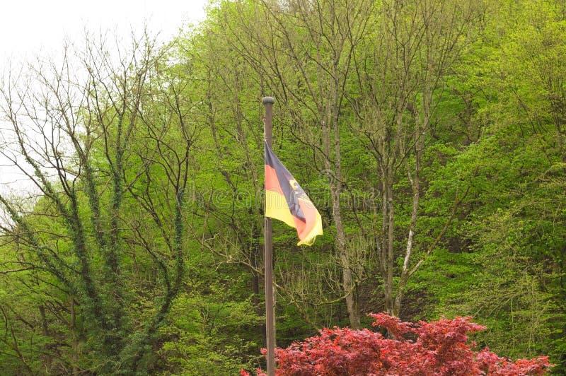 Deutsche Flagge im Wald Deutschland, Europa lizenzfreie stockfotografie