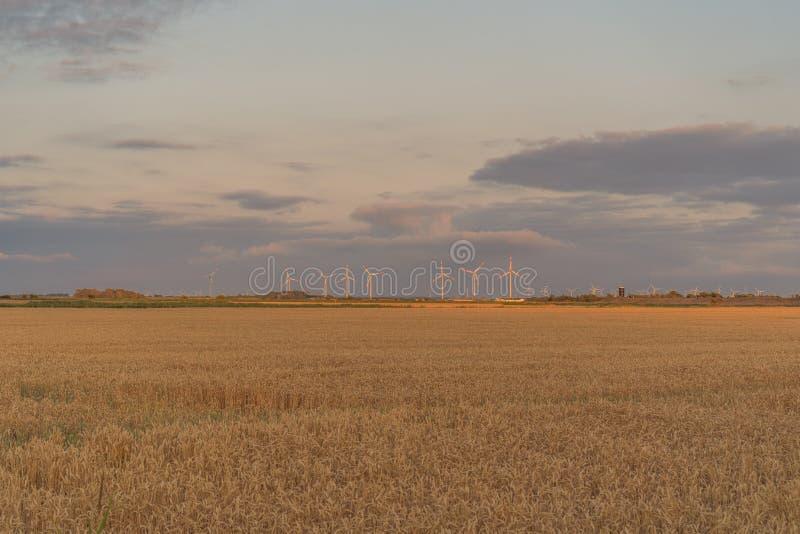 Deutsche Nord-Friesland-Landschaft bei Sonnenuntergang lizenzfreie stockbilder