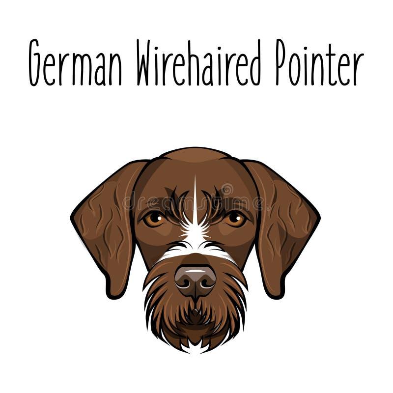 Deutsche Wirehaired Nadelanzeige Hunderasse Brown stellen vom Jagdhund gegenüber Auch im corel abgehobenen Betrag lizenzfreie abbildung