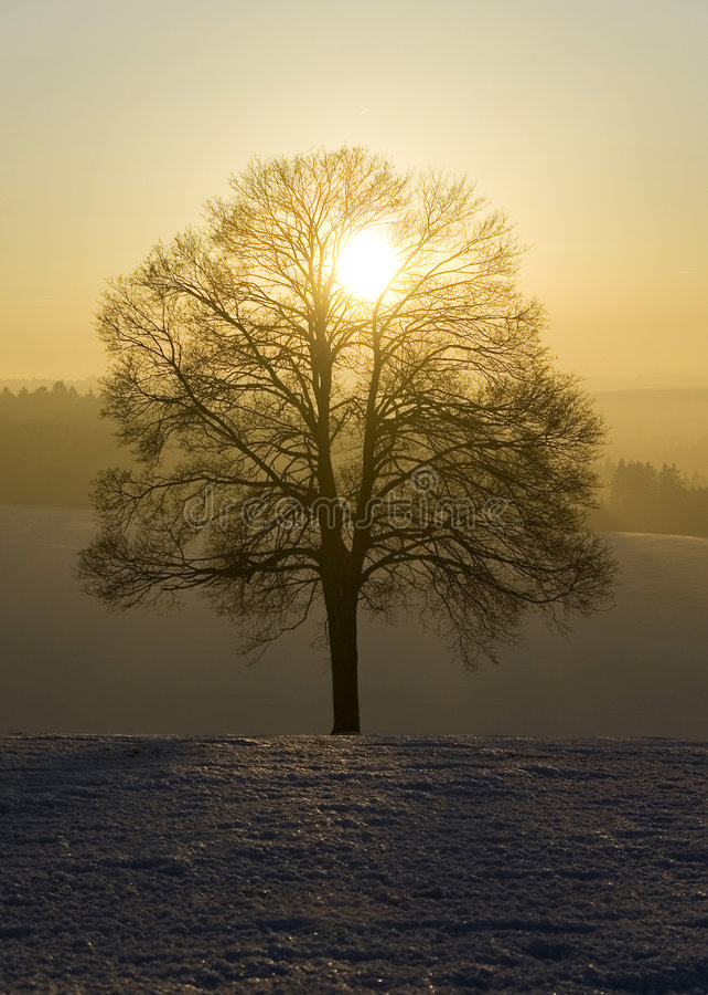 Deutscher Winter I lizenzfreie stockbilder