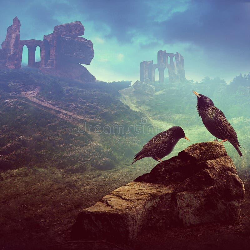 Deux étourneaux sur la roche avec des ruines à l'arrière-plan images libres de droits