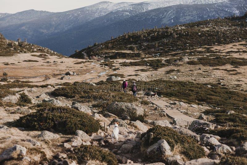 Deux amies réussies de femme de randonneur apprécient la vue sur la crête de montagne Randonneurs heureux marchant en nature photos stock