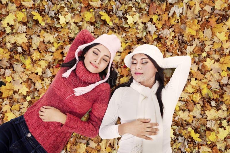Deux amis dormant en stationnement d'automne photographie stock libre de droits