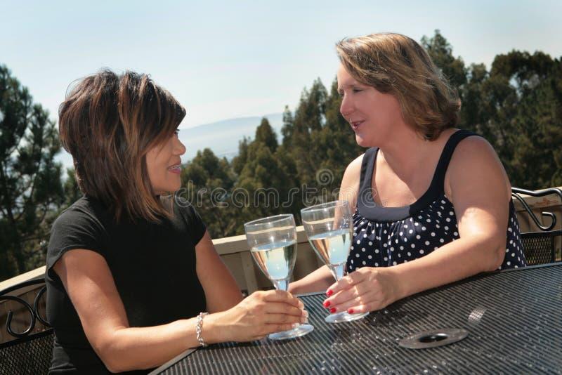 Deux amis parlant tout en buvant du vin blanc image libre de droits