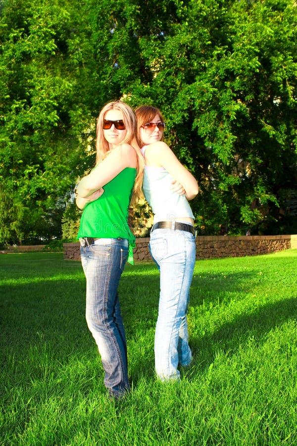 Deux amis sur l'herbe image libre de droits