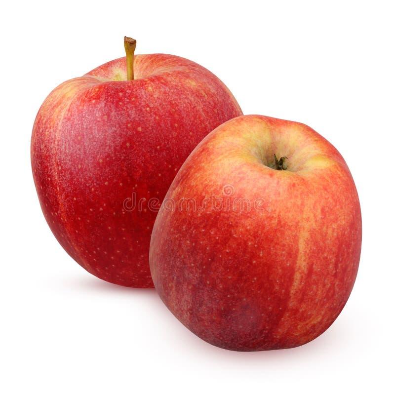 Deux Apple rayé rouge ont isolé sur le fond blanc photo libre de droits