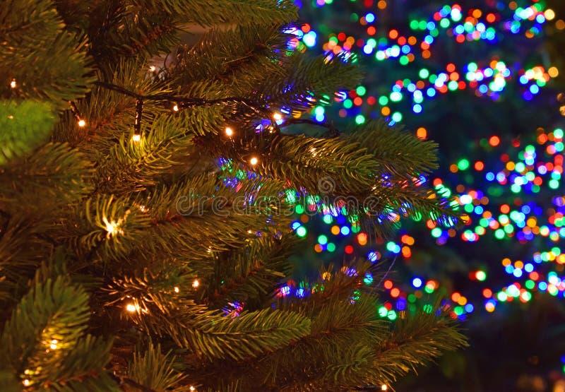 Deux arbres de Noël avec différentes lumières, blanc et coloré image stock