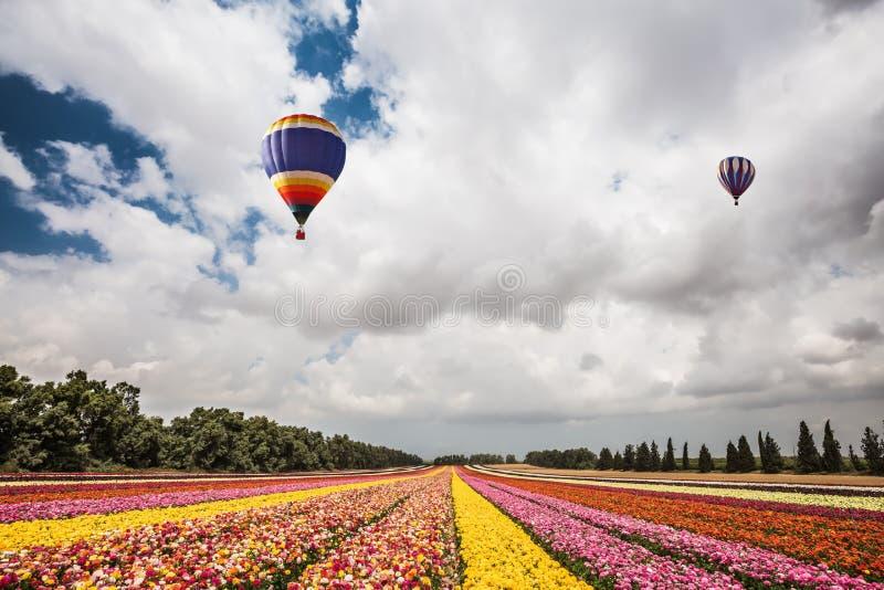 Deux ballons multicolores magnifiques images libres de droits
