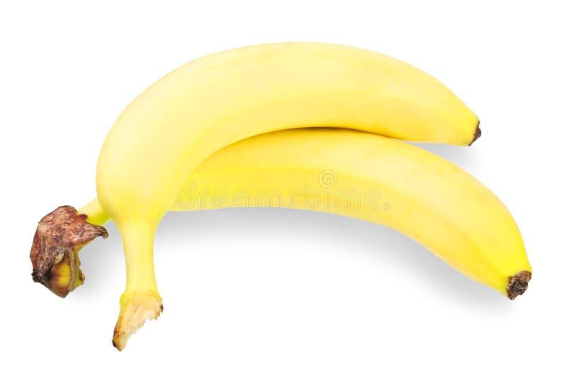 Deux bananes photographie stock libre de droits