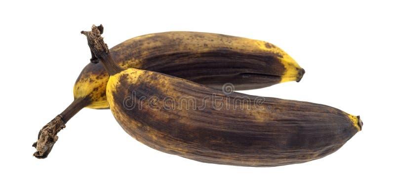 Deux bananes mûres sur un fond blanc image stock