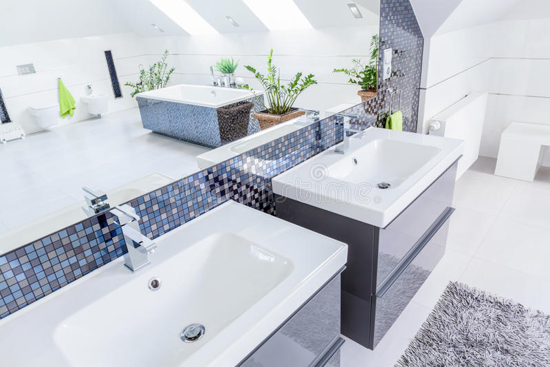 Deux bassins dans la salle de bains image libre de droits