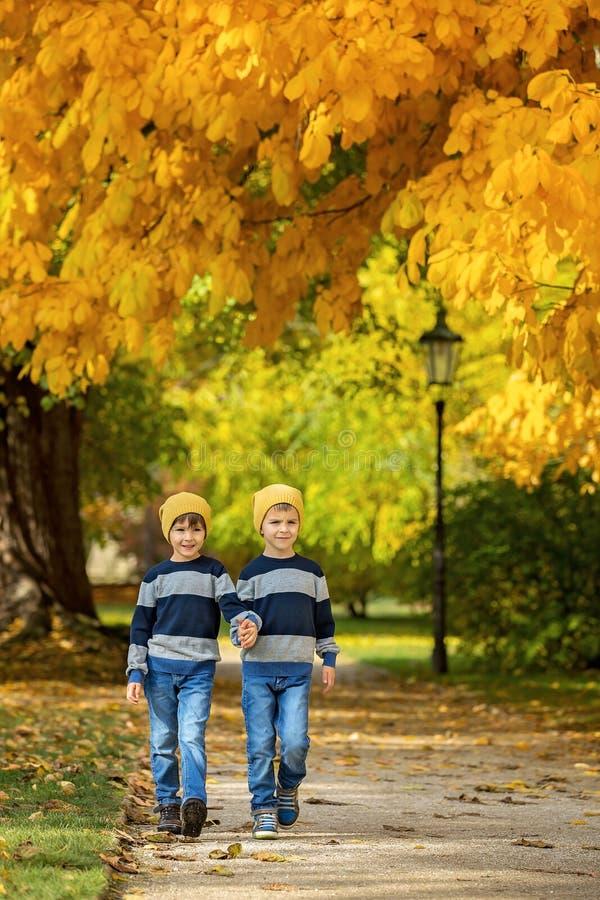 Deux beaux enfants, frères de garçon, marchant sur un chemin dans le beaut photographie stock