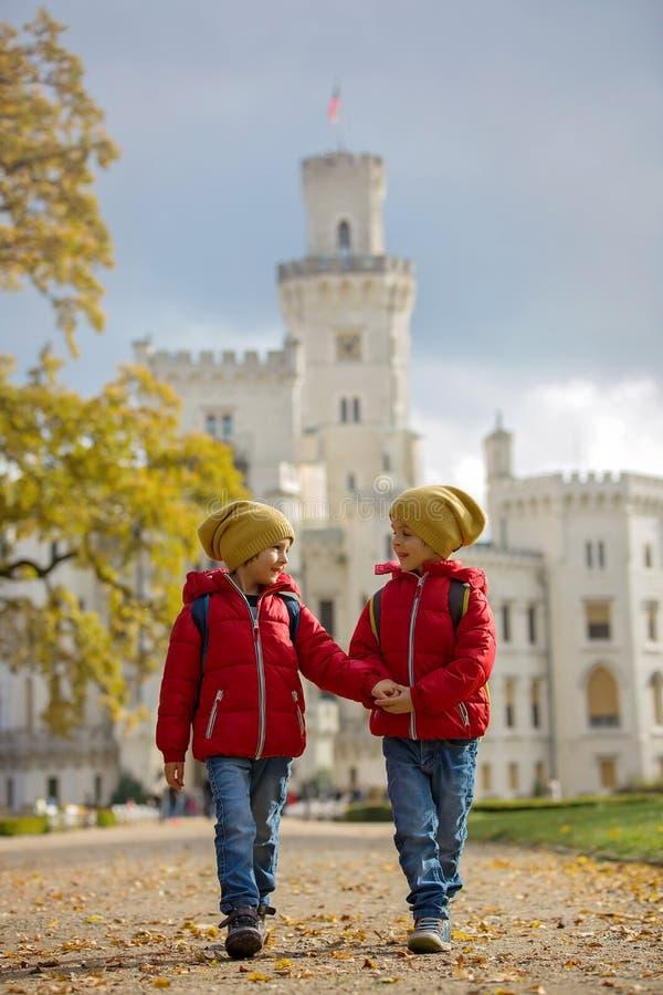 Deux beaux enfants, frères de garçon, marchant sur un chemin dans le beaut photos libres de droits