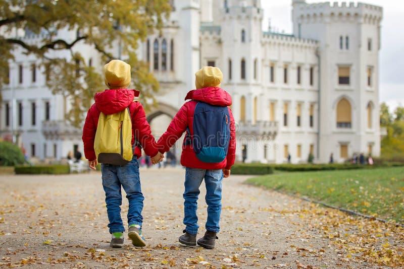 Deux beaux enfants, frères de garçon, marchant sur un chemin dans le beaut images stock