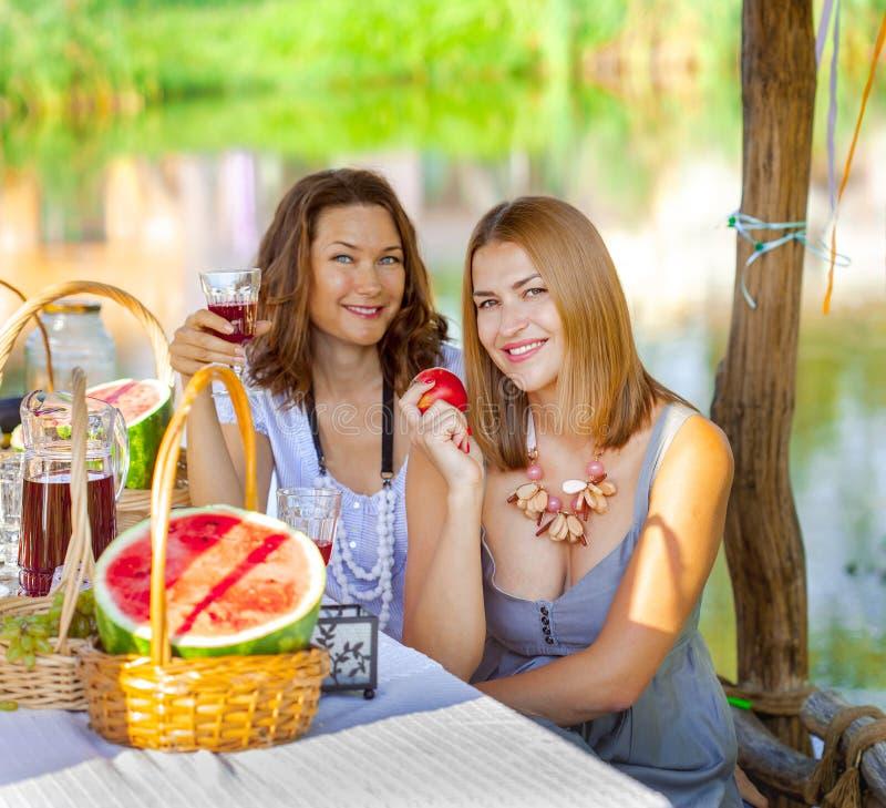 Deux belles femmes sur un pique-nique photo stock