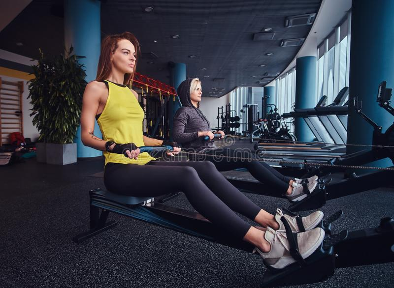 Deux belles jeunes femmes établissant sur des machines à ramer au gymnase moderne Formation croisée images stock