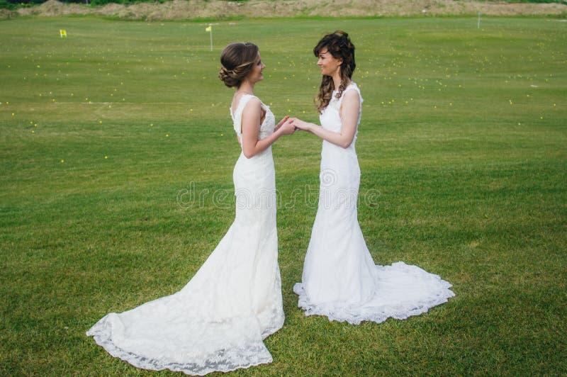 Deux belles jeunes mariées tenant des mains sur le champ vert image libre de droits