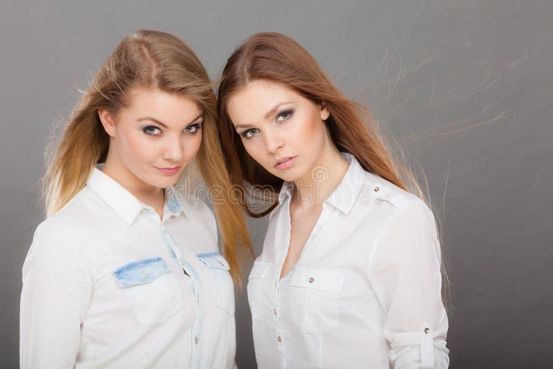 Deux belles poses de femmes, de blonde et de brune image libre de droits
