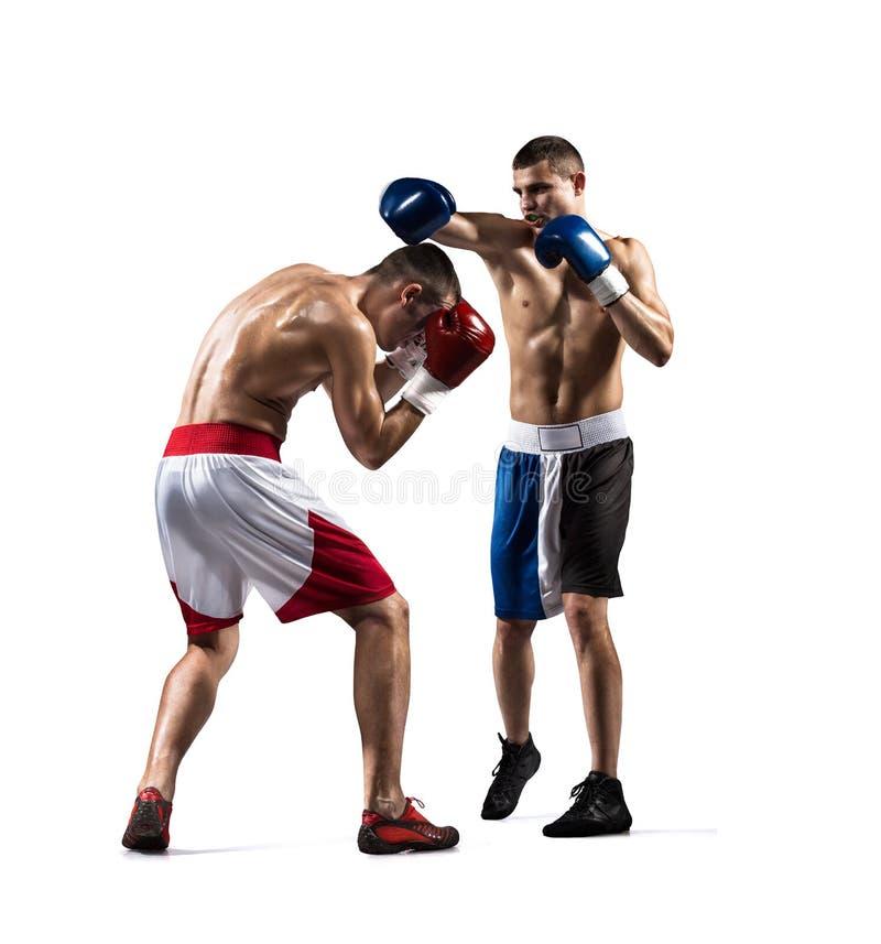 Deux boxeurs de professionl combattent sur le blanc images stock