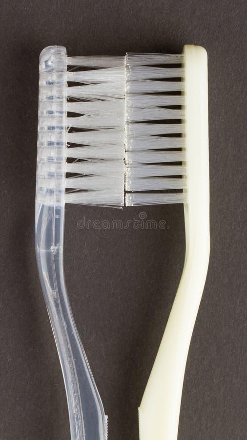 Deux brosses à dents blanches d'isolement photographie stock libre de droits