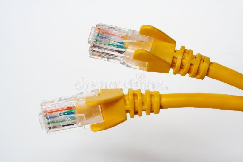 Deux câbles de réseau photographie stock libre de droits