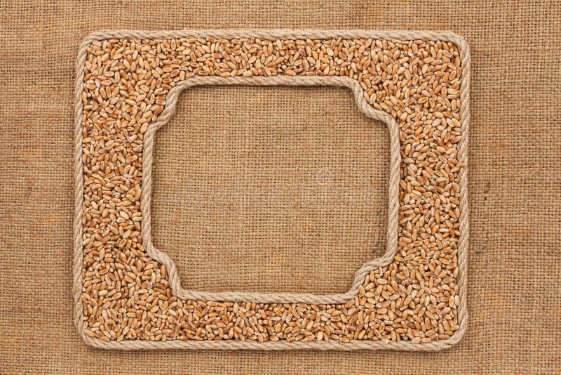Download Deux Cadres Faits En Corde Avec Des Grains De Blé Sur La Toile à Sac Photo stock - Image du brut, organique: 56490674