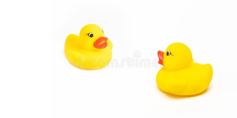 Deux canards en caoutchouc jaunes de jouet sur le blanc photographie stock libre de droits